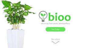 Energia, ambiente, innovazione, tecnologia, start-up, cella a combustibile, idrogeno, ossigeno, piante, giardinaggio, smartphone, close-up engineering